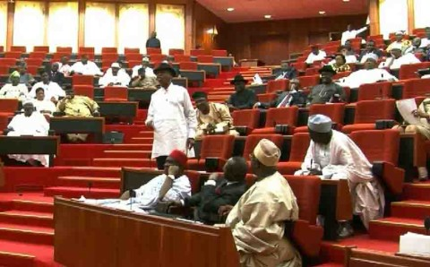Nigeria's senate in session