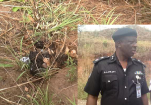 Parts of the decomposed body of the kidnapped Dad of ex-super Eagle player. (Inset) Anambara Police Commissioner in the Bush where the body was found.