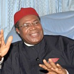 CONFAB: Ex-Enugu Governor Nwodo Heads Ohaneze Agenda Harmonisation Committee