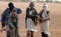 Fulani-herdsmen-gunmen