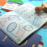 South African Lawmakers Oppose VFS Monopoly in Issuing Of Visas