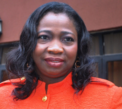 Chairperson, House of Representatives Committee on Diaspora Affairs, Hon. Abike Dabiri-Erewa