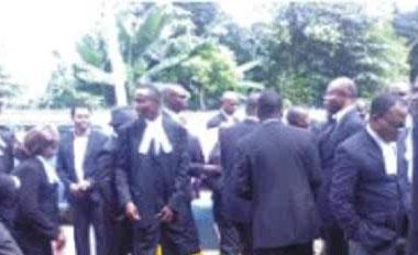 Aba Lawyers