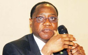 Minister of Trade and Industry Olusegun Aganga