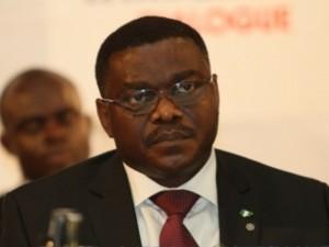 Nigeria minister of health Professor Onyebuchi Chukwu