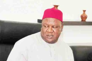 Secretary to the government of the federation, Pius Anyim