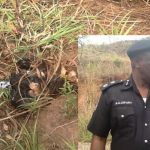 Decomposed body of Kidnapped Ex- Super Eagles Dad Found in Bush