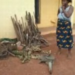 Enugu Police Raid Arms Manufacturing Company, Arrest Widow Who Keeps The Guns
