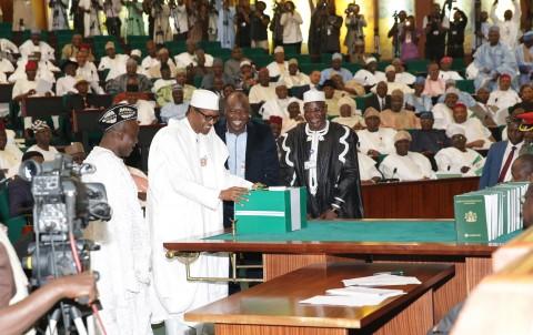 Image result for nigerian budget