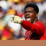 Super Eagles Goalie, Akpeyi, Sets to Become South African Citizen