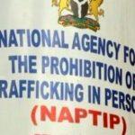 NAPTIP Arrests Alleged Trafficker Of Nigerian Woman to Oman