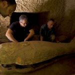 Egypt Discovers 2,500-Year-Old Intact 13 Sealed Coffins