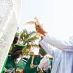 Nigerians Mock Buhari As Pigeons Released On Armed Forces Day Refuse To Fly