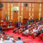 Senate Passes Harmonised PIB Amidst Protests