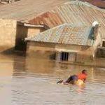 Flood Displaces 2000 People In Adamawa – SEMA