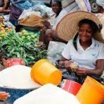 Tackle Insecurity In Nigeria To Avoid Food Shortage, Nutrition Society Of Nigeria Tells FG