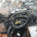 Suspected IPOB Members In Enugu Set Ablaze Truck Loaded with Spare Parts
