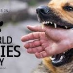 Veterinarians To Vaccinate 100,000 Dogs To Mark World Rabies Day