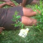 Anambra Stampede: Hold Governor Peter Obi Responsible – APC